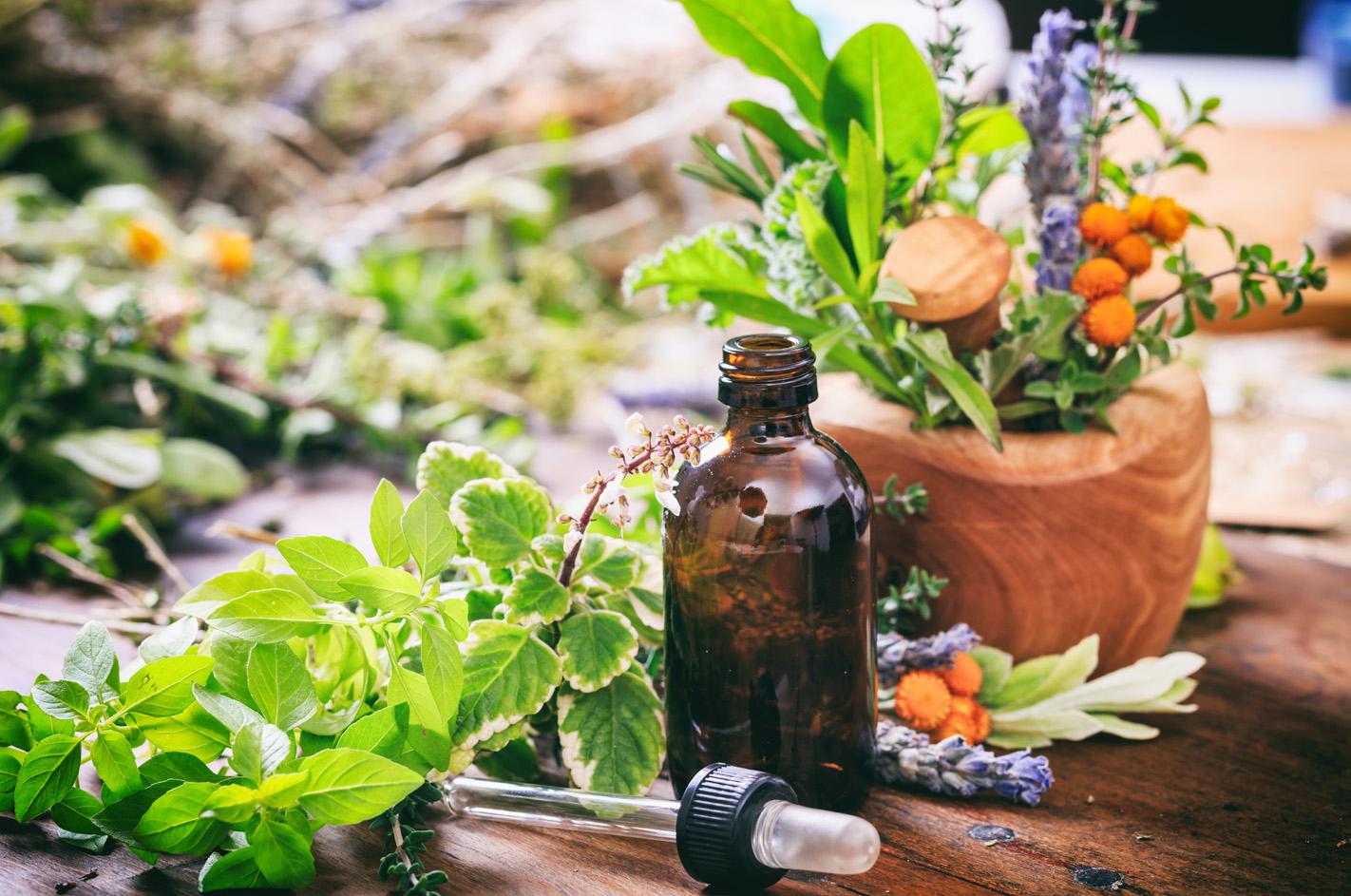 Pflanzliche Heilmittel (Phytotherapie)
